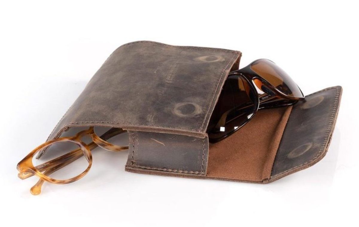 Dynamic Duo Glasses Case