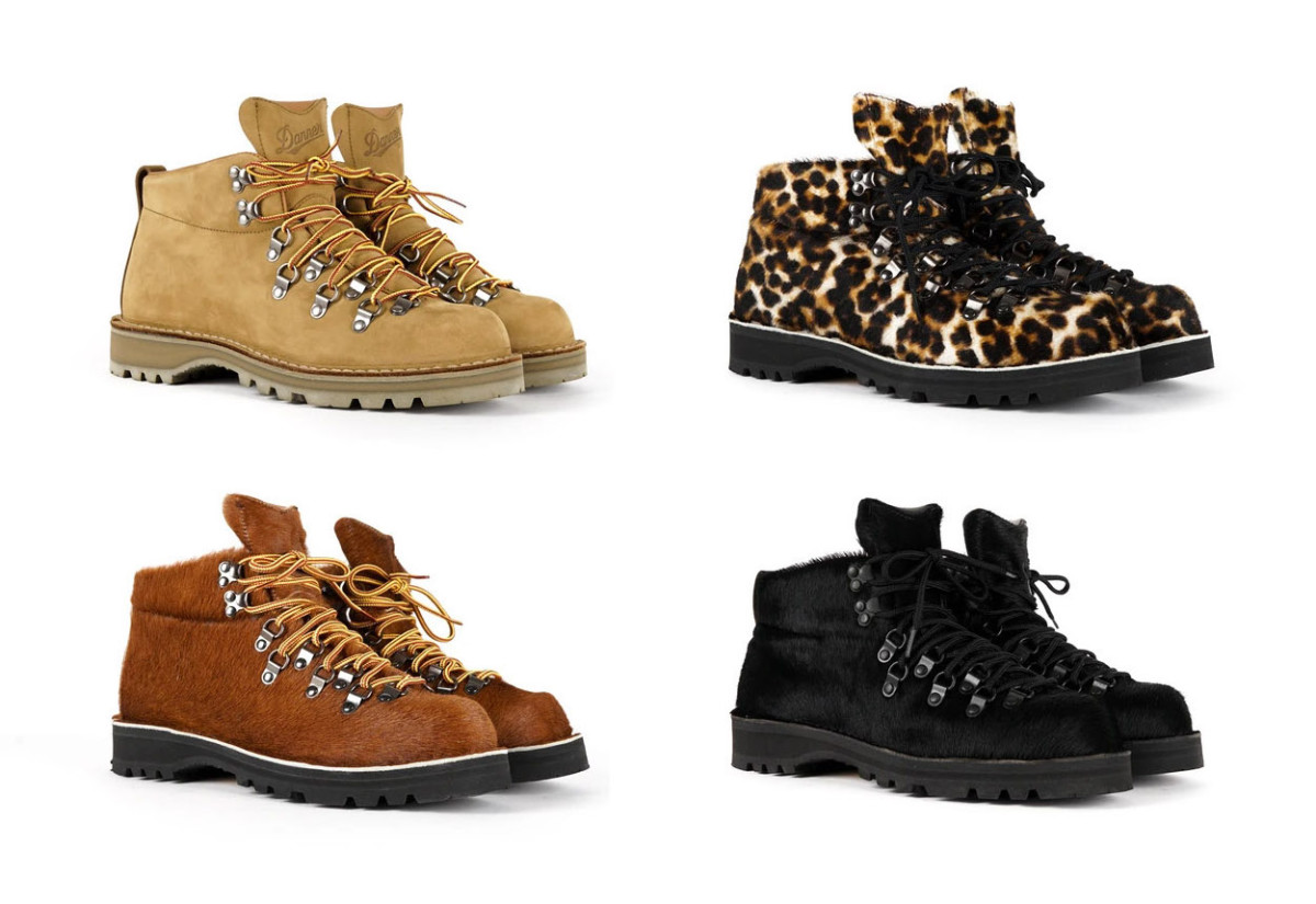 Nepenthes x Danner